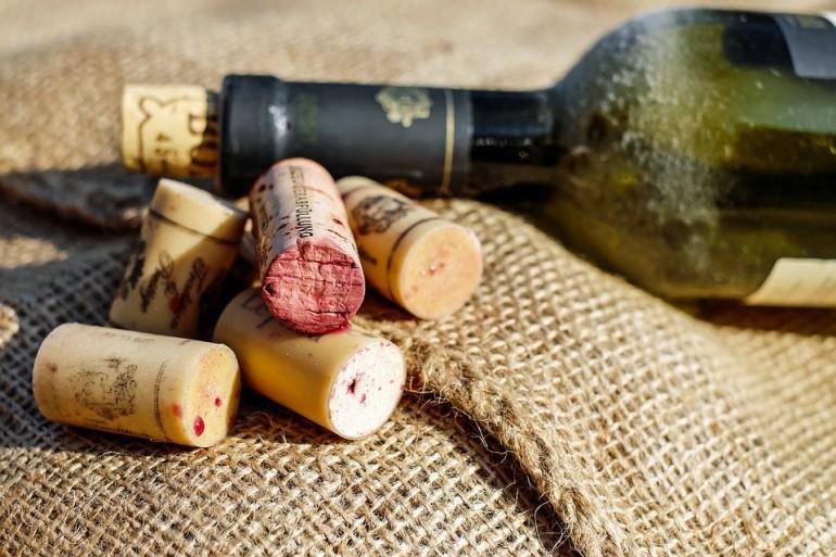 Czy wiesz już wszystko o fermentacji wina? Sprawdź nasz przegląd drożdży winiarskich